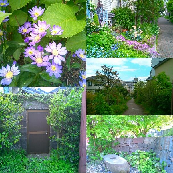 花の楽しい季節